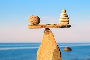 Balancing Marketing Services and Marketing Software